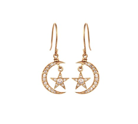I Want -Blackbird And The Snow Gold And Diamond CelestialEarrings